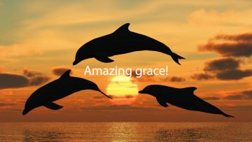 Amazing Grace HD Duet Played by Willi Rose